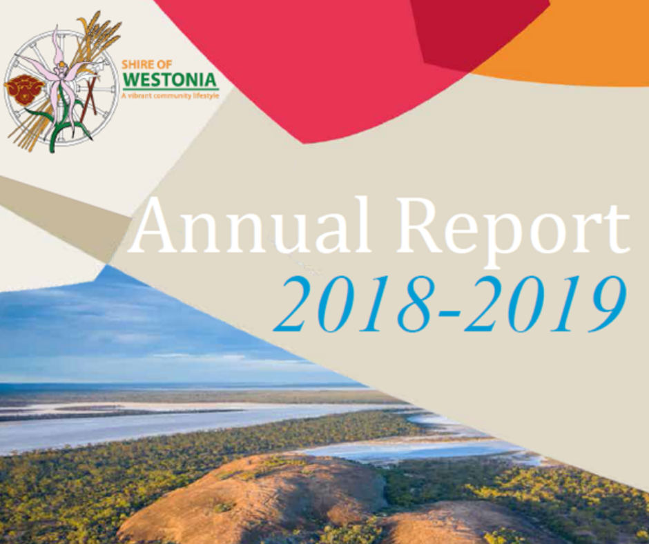 ANNUAL REPORT 2018/19  & ANNUAL GENERAL MEETING OF ELECTORS