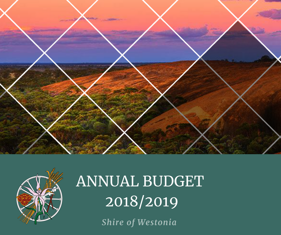 Annual Budget 2018-19