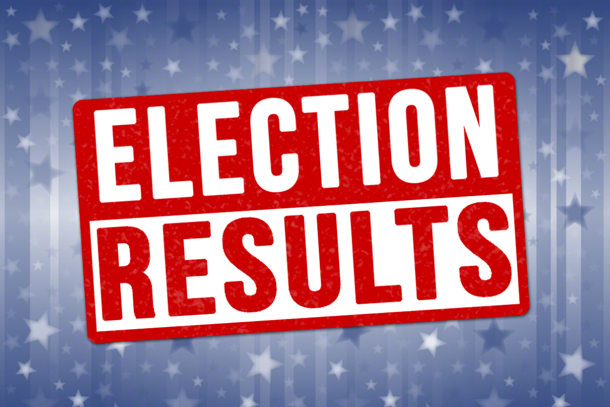 2019 Ordinary Local Government Election Results