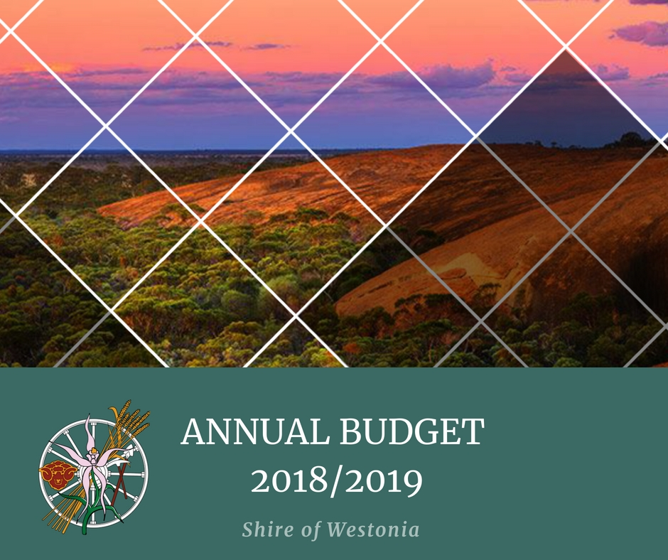 Annual_Budget